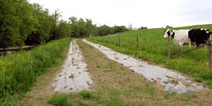 Clôture et site d'abreuvement pour le bétail